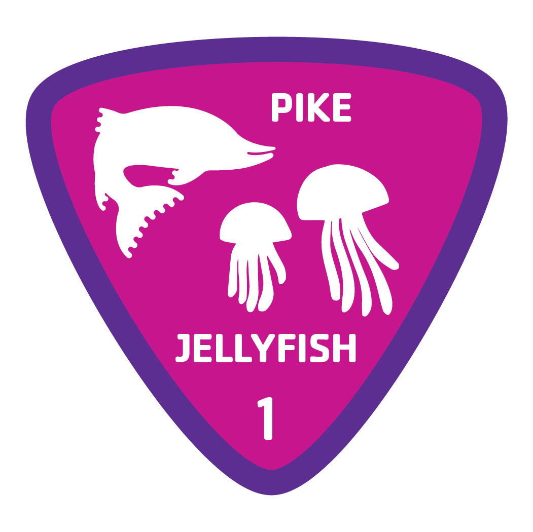 Aquatics-badge-1-pike-jellyfish