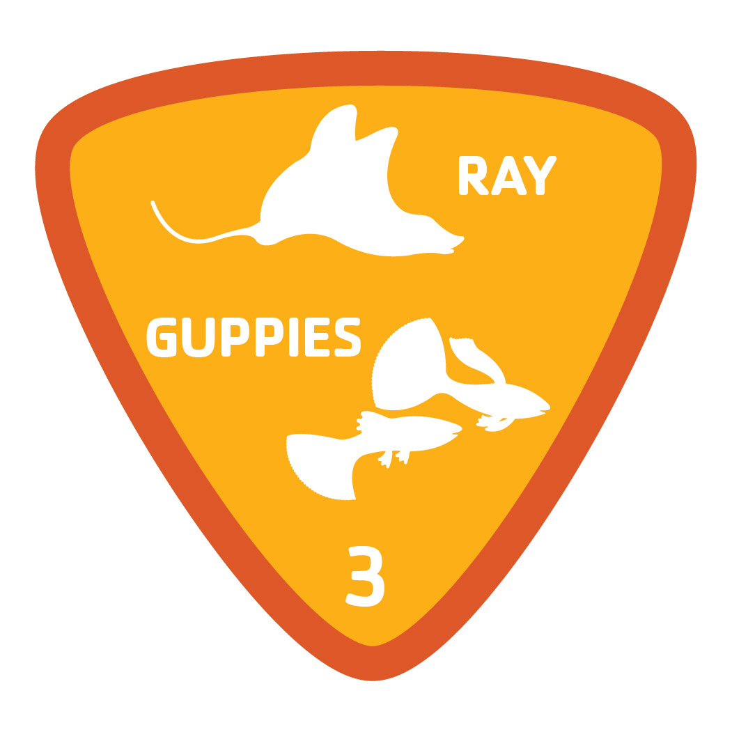 Aquatics-badge-3-ray-guppies