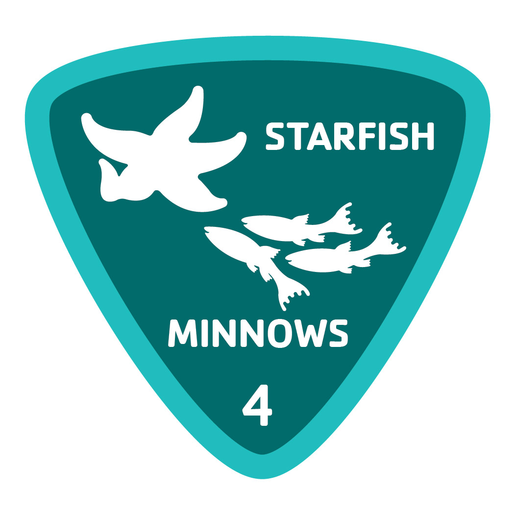 Aquatics-badge-4-starfish-minnows