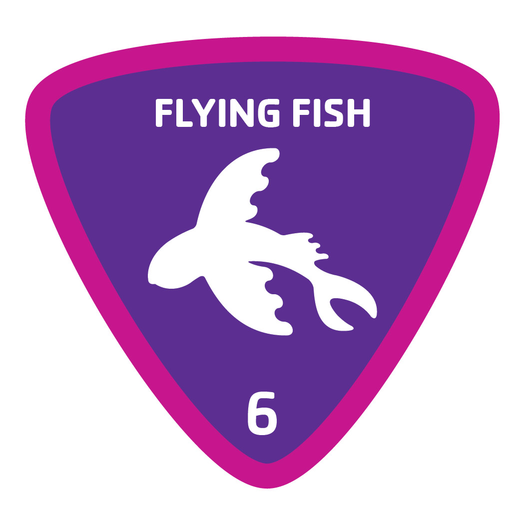 Aquatics-badge-6-flying-fish